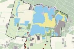 Roodborsttapuit-territorium-285x300